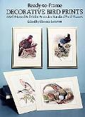 Ready-To-Frame Decorative Bird Prints 6 Self-Matted Full Color Prints for Standard 9X12 Frames