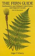 Fern Guide Northeastern and Midland United States and Adjacent Canada