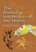 Anatomy and Action of the Horse