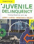 Advantage Books-Juvenile Delinquency