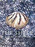 The Shell: A World of Decoration and Ornament