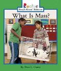 What Is Mass?