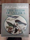 Original Water Color Paintings By John James Audubon For Birds Of America