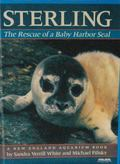 Sterling: The Rescue of a Baby Harbor Seal - Sandra Verrill White - Hardcover - 1st ed