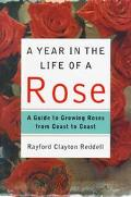 Year in the Life of a Rose: A Guide to Growing Roses from Coast to Coast - Rayford Clayton R...