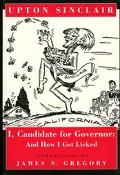 I, Candidate for Governor and How I Got Licked