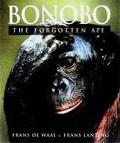 Bonobo The Forgotton Ape