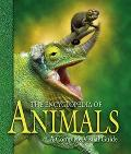 Encyclopedia of Animals A Complete Visual Guide