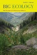 Big Ecology: The Emergence of Ecosystem Science