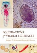 Foundations of Wildlife Disease
