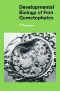 Developmental Biology of Fern Gametophytes