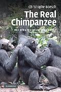 The Real Chimpanzee: Sex Strategies in the Forest