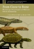 From Clone to Bone : The Synergy of Morphological and Molecular Tools in Palaeobiology