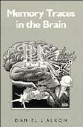 Memory Traces in the Brain
