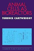 Animal Cells as Bioreactors