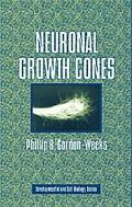 Neuronal Growth Cones