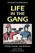 Life in the Gang Family, Friends, and Violence