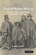 Trials of Nation Making Liberalism, Race, and Ethnicity in the Andes, 1810-1910