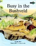 Busy in the Bushveld South African Edition