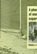 Phenomenology of Working Class Experience