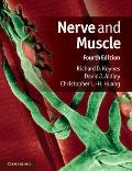 Nerve and Muscle