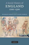Social History of England 1200-1500