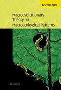 Macroevolutionary Theory on Macroecological Patterns
