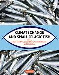Climate Change and Small Pelagic Fish