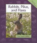Rabbits, Pikas, and Hares