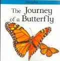 Journey of a Butterfly