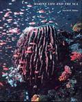 Marine Life and the Sea