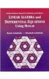 Student Solutions Manual for Golubitsky/Dellnitz's Linear Algebra and Differential Equations...
