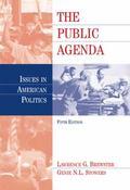 Public Agenda Issues in American Politics