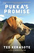 Pukka's Promise : The Quest for Longer-Lived Dogs