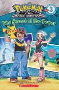 Pokemon Sinnoh Reader #3