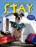 Stay : The True Story of Ten Dogs