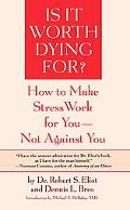 Is It Worth Dying for A Self-Assessment Program to Make Stress Work for You, Not Against You