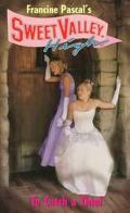To Catch a Thief (Sweet Valley High Series #133) - Francine Pascal - Mass Market Paperback