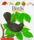 Birds - Claude Delafosse - Hardcover