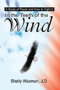 In the Teeth of the Wind A Study of Power and How to Fight It