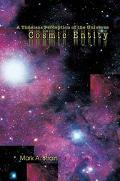 Cosmic Entity A Timeless Perception Of The Universe