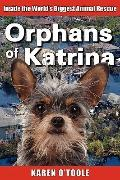 Orphans of Katrina : What Really Happened on the Gulf and How You Can Help Save America's Pe...