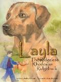 Layla the Ridgeless Rhodesian Ridgeback