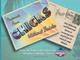 Postcards from Chicks Without Bricks: Heartwarming and Humorous Stories to Encourage and Ins...