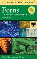 Peterson Field Guide To Ferns And Their Related Families  Northeastern and Central North Ame...