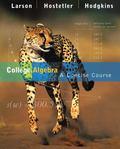 College Algebra A Concise Course