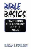 Bible Basics Mastering the Content of the Bible