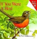 If You Were a Bird - S. J. Calder - Library Binding