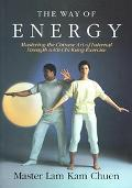 Way of Energy Mastering the Chinese Art of Internal Strength With Chi Kung Exercise
