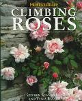 Climbing Roses - Stephen Scanniello - Hardcover - 1st ed